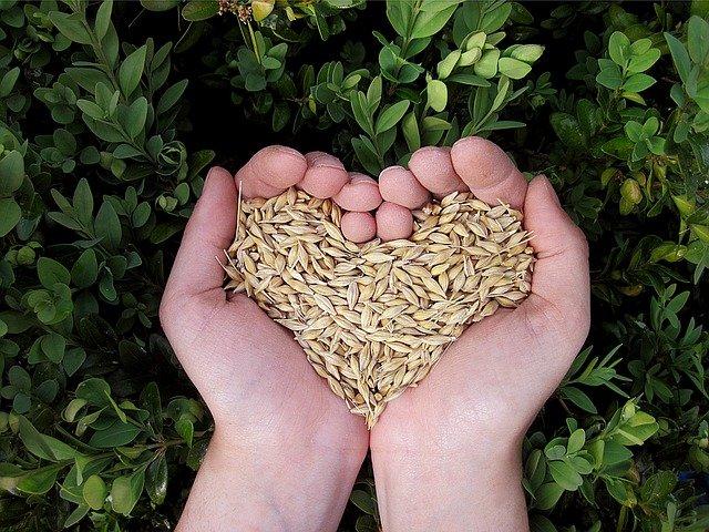spendenorganisationen-naturschutz-tue-gutes